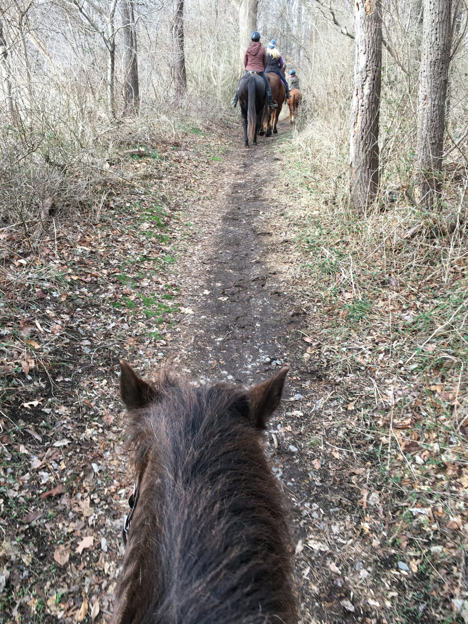 2020-02-16 Riding the Trails