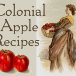 Colonial Apple Recipes