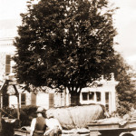 Styers, Moving a Tree