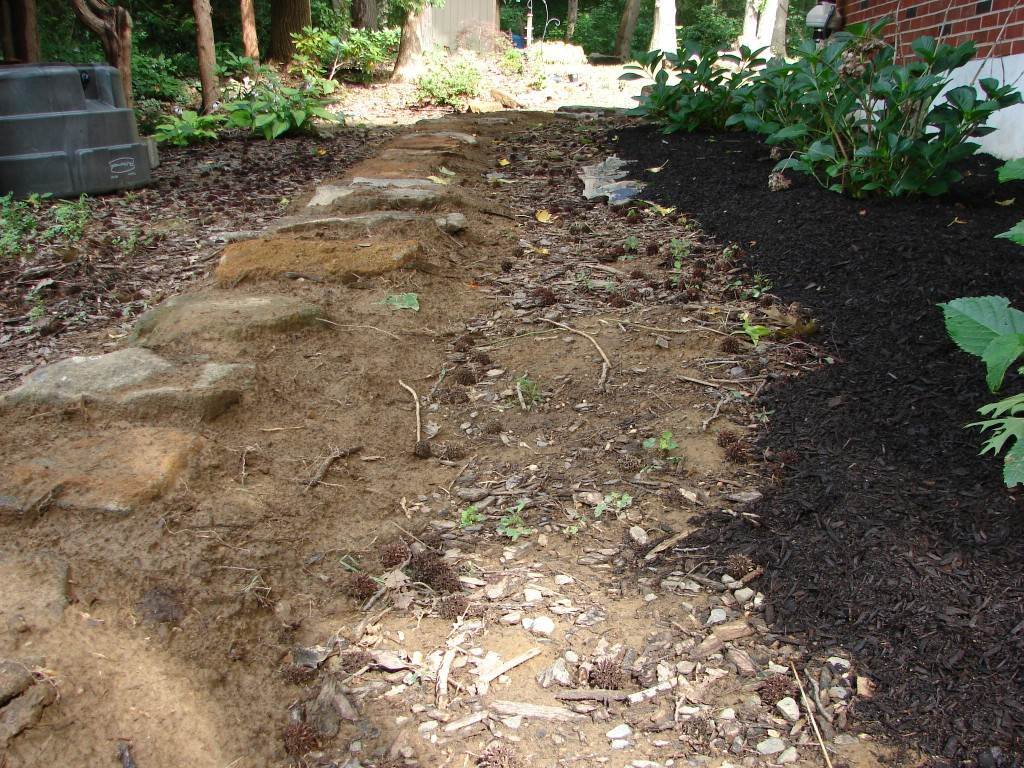 west side yard, facing north, pathway project 01