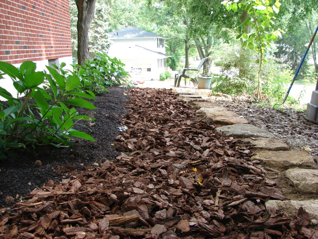 west side yard, facing south, stepping stones with mulch 1